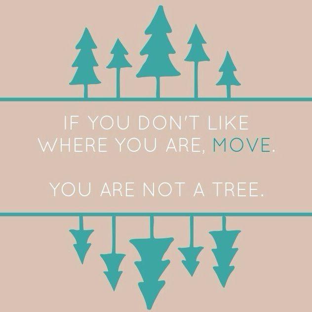 move-tree
